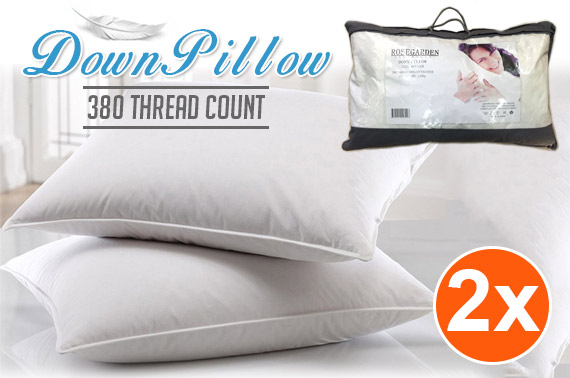 2x Luxury Duck Down & Feather Pillows