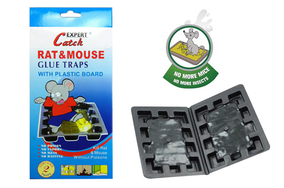 Pack of 2 Mouse/Rat Glue Trap Plastic Board