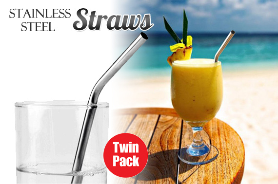 2x Stainless Steel Reusable Drinking Straws