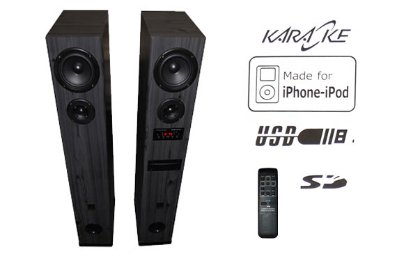 Larsen i850 Hi-Fi Speaker System with iPod/iPhone Dock and USB/SD/Mic/FM/Remote