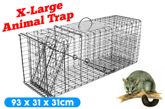 Extra Large Folding Humane Live Animal Trap Cage