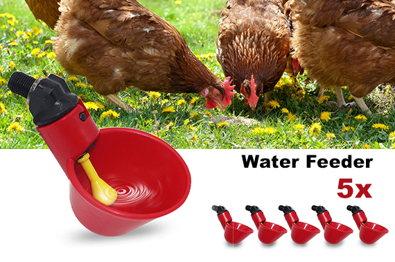 5x Automatic Chicken Bird Water Feeder Drinker Cups