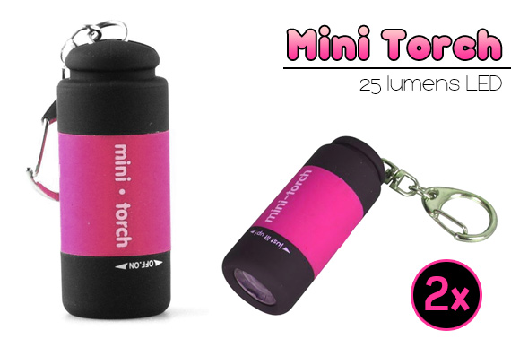 FREE Ozstock Day: 2x LED Mini-torch with Batteries and Keyring