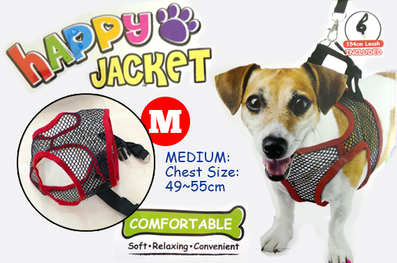 Puppy Dog Mesh Vest (MEDIUM) and Leash
