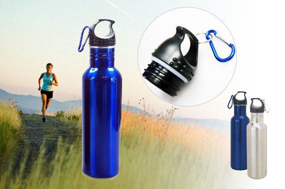 2x Quality 700mL Stainless Steel Sports Bottle w/ Carabiner Hook
