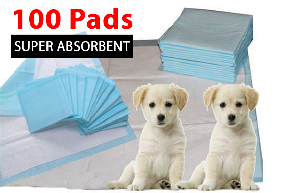 100pcs Super Absorbent Pet Puppy Toilet Training Pads