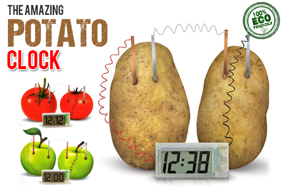 Green Science Potato Clock Kit