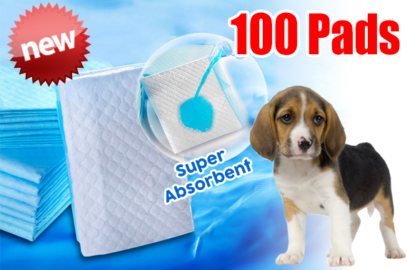 100pcs Pet Puppy Indoor Toilet Training Pads 60 x 60cm