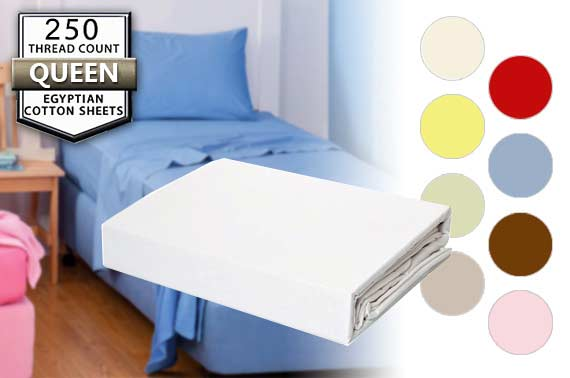 Queen Size Egyptian Cotton Bed Sheet Set (250 Thread Count) - Random Colour