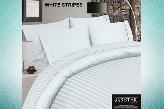 5-Star QUEEN Size Egyptian Cotton Sheet Set (1000 Thread Count) - White Stripe