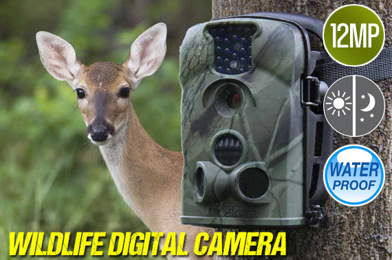 12MP IR Sensor Digital Wildlife Camera