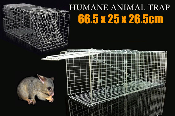 Live Humane Animal Traps Transport Folding Cage