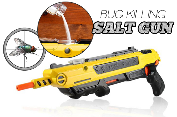 Bug & Fly Killing Salt Gun