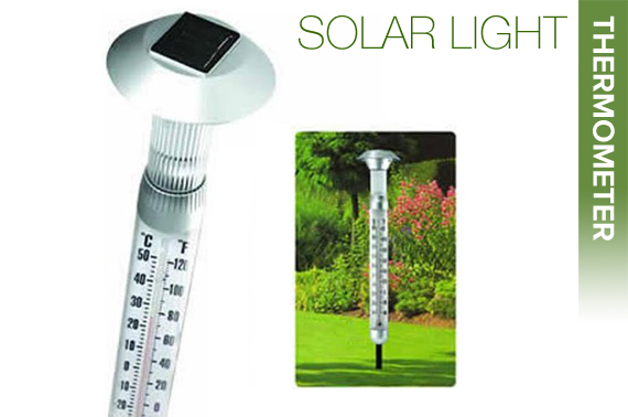 2 IN 1 Solar Light Thermometer with Spike