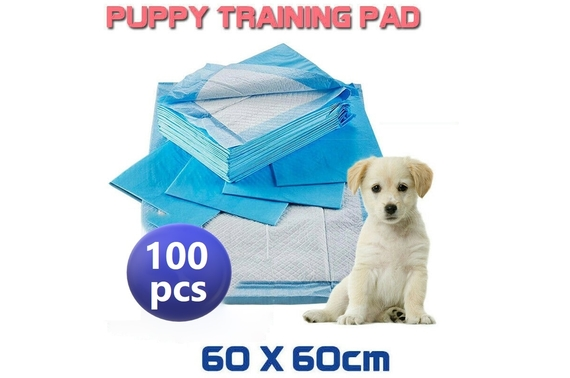 100x 60x60cm Puppy Pet Dog Indoor Toilet Training Pads Super Absorben